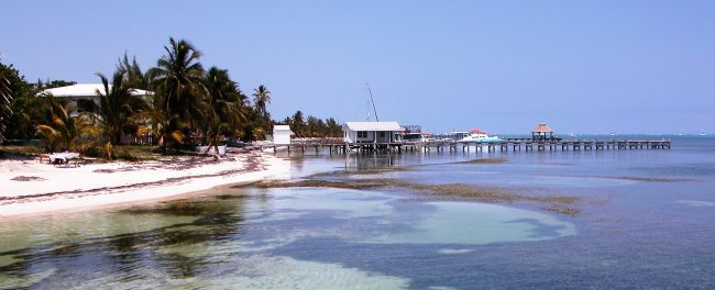 Boats, piers and weed floating in the sea Ambergris, Caye, Belize