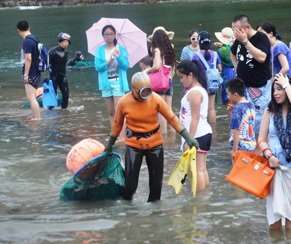 Female divers wade through tourists in the sea to bring in their catch