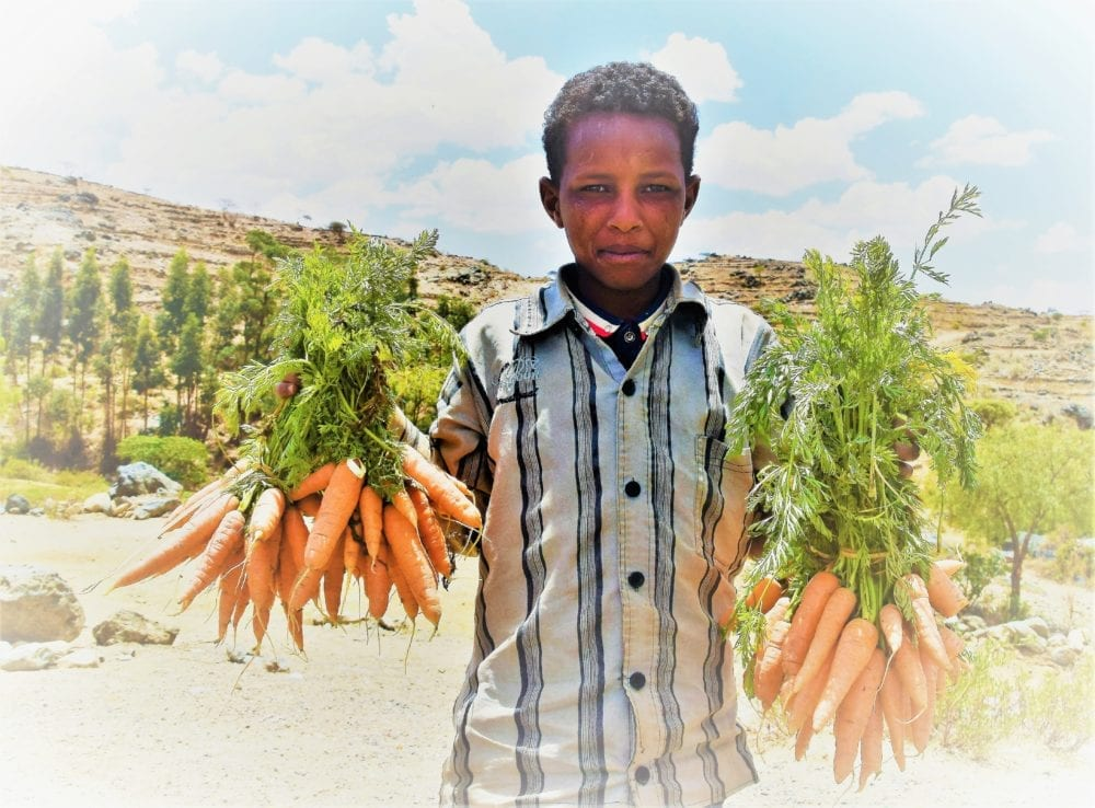 A boy on the roadside holds out bunches of carrots