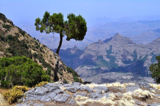 A stunning view across the Simian Mountains