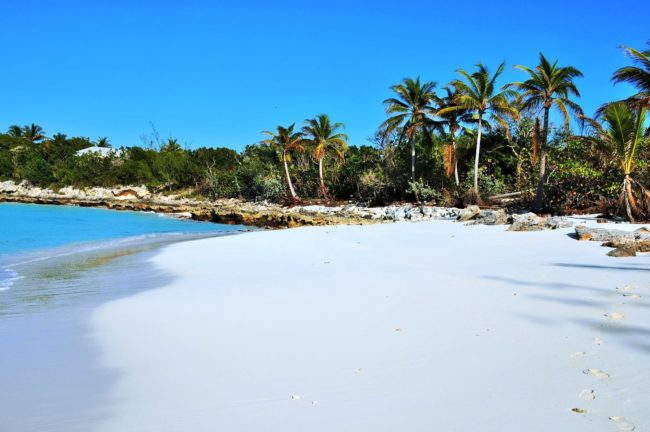 Beautiful white sand framed by palm trees, Exumas