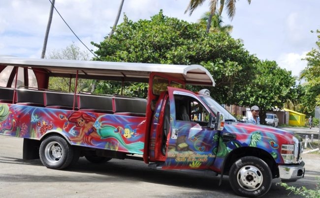 A painted truck bus
