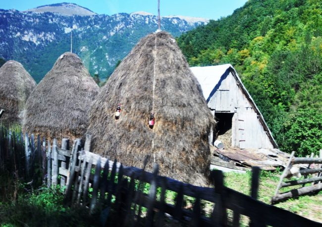 Pointy roofed hayricks on a farm in Montenegro