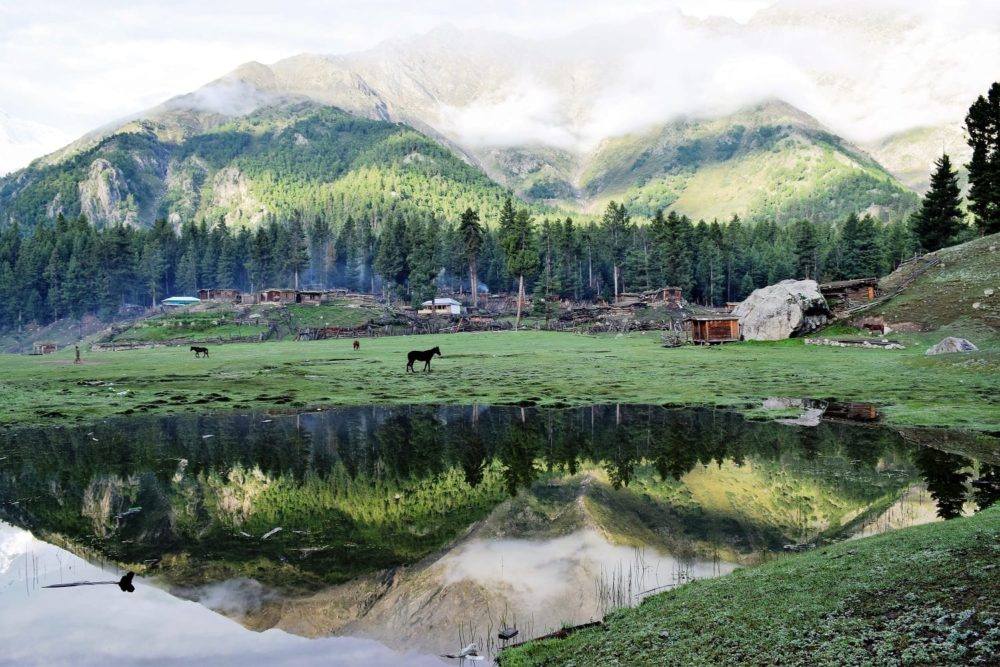 Green peaks at Fairy Meadows reflected in a lake, Pakistan