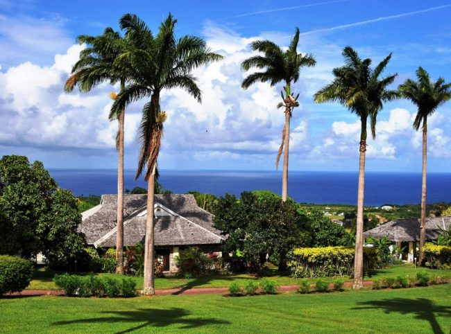 A view across Ottleys Planation House grounds to the ocean St kitts