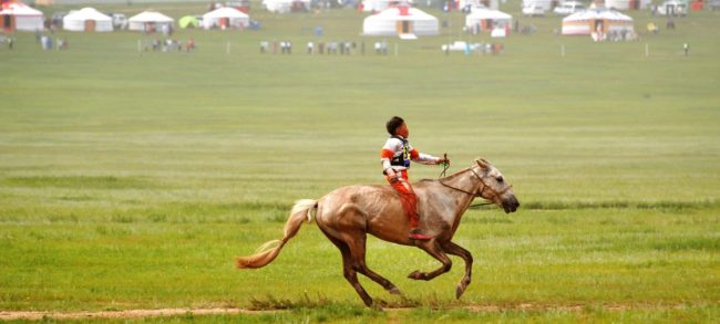 A small boy rides his horse home at the end of his gruelling horse race