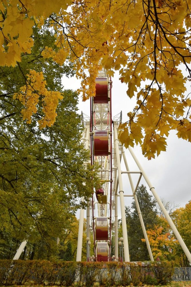 A big wheel framed by autumn colour
