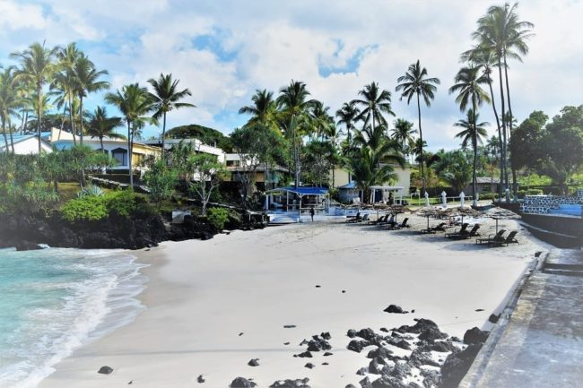 The soft white sand and palm trees of Itsandra Beach Comoros
