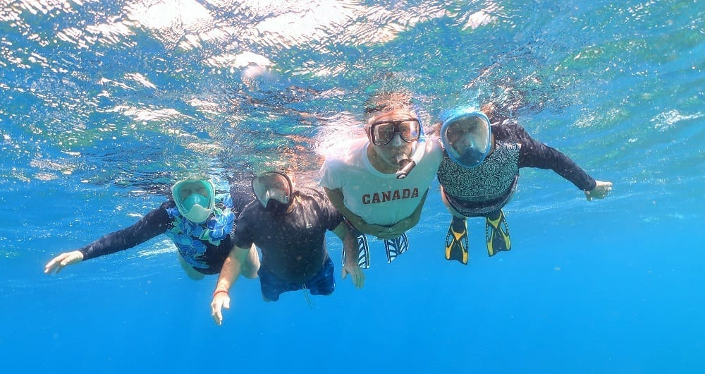 The four Canadians snorkelling together
