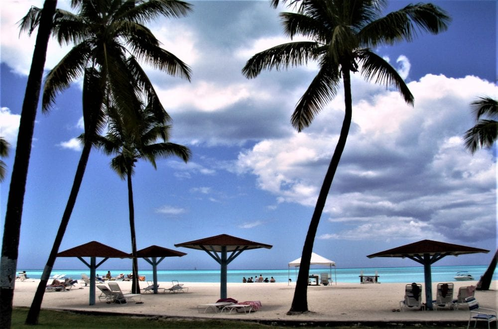 Palms and beach umbrellas on Jolly Harbour Beach Antigua