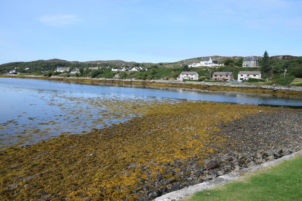 An orange seaweed covered beach at Inverkirkaig