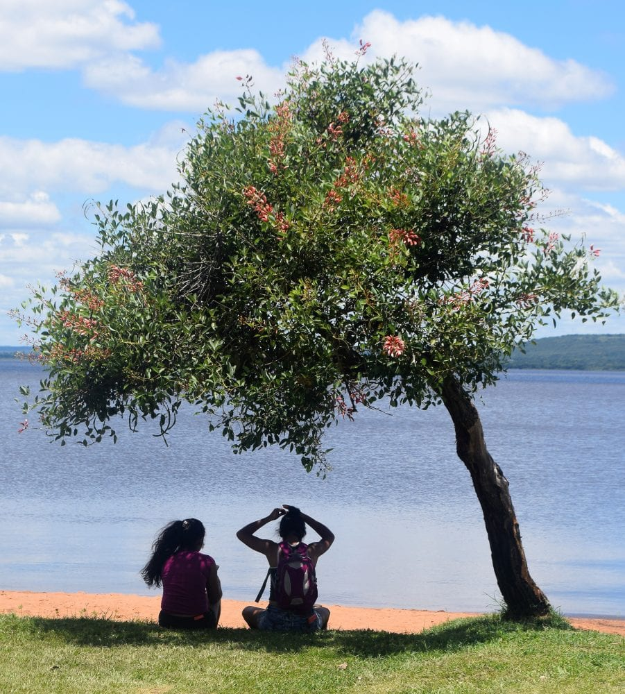 A couple sit under a tree at the Ypacaraí Lake