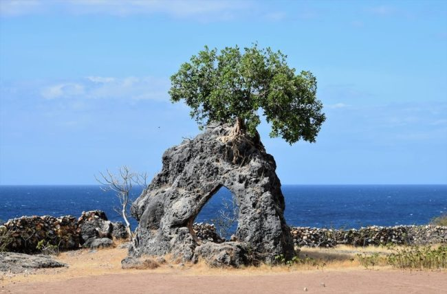 A natural window in the rock, with a tree on top