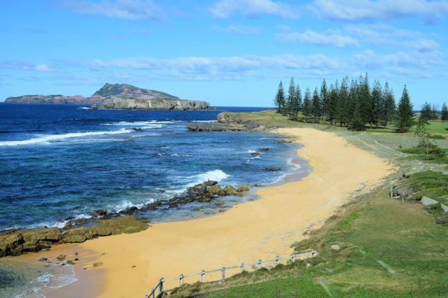 An utterly gorgeous strip of golden bay backed by Norfolk Pines and Phillip Island