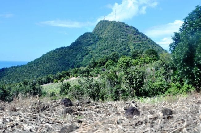 A rainforest covered peak at Dominica