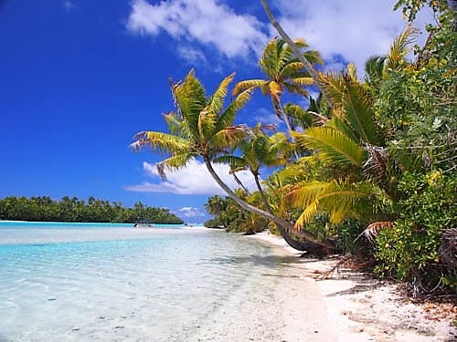 A white beach, swaying palms , turquoise water in the lagoon at Aitutaki