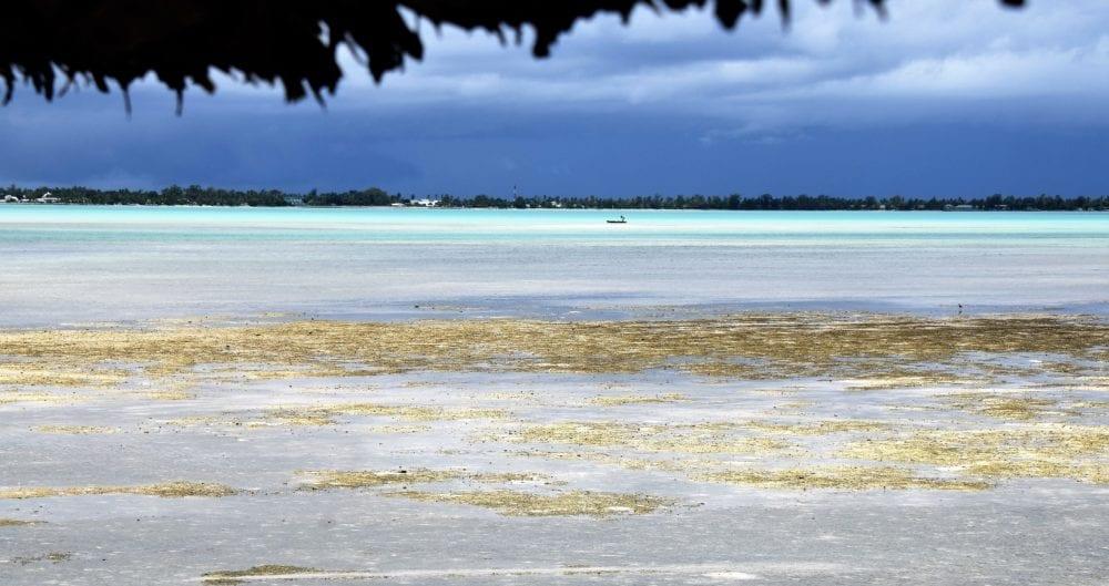 A sand bar in the lagoon at South Tarawa , Kiribati