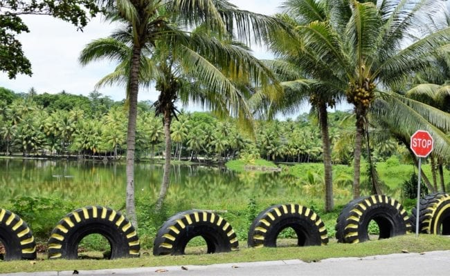 A lake decorated with painted tyres on Nauru
