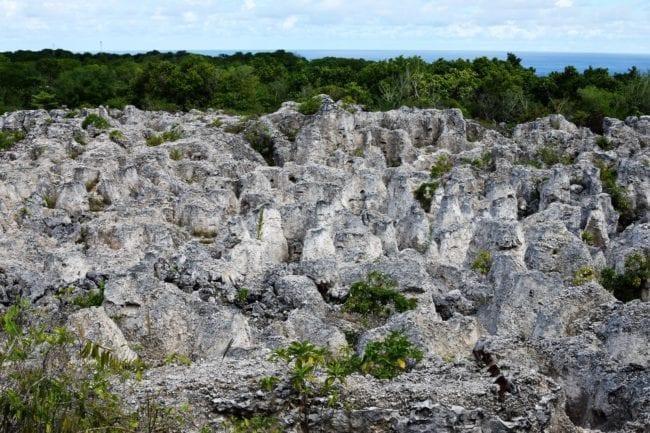 Pinnacles at Topsite