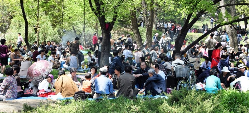 Barbecue picnics in the park on May Day