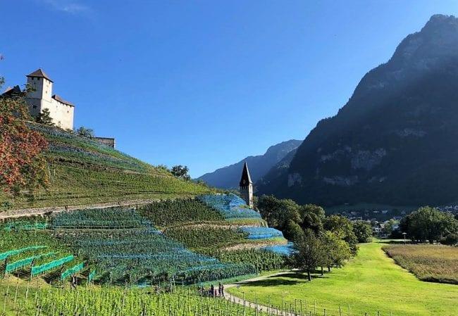 Castle and vineyard at Balzers, Liechtenstein