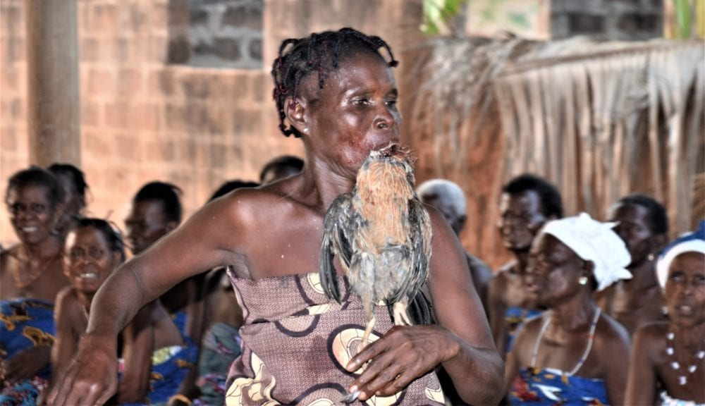 A woman dancing with a sacrificed cock in her mouth dancing at a Voodoo ceremony in Togo