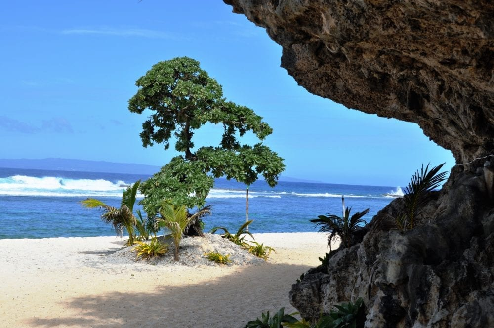 A tree on the beach viewed through the side of a natural arch on Tonga