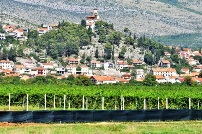 A village sprawling down a hill behind vineyards, Bosnia,