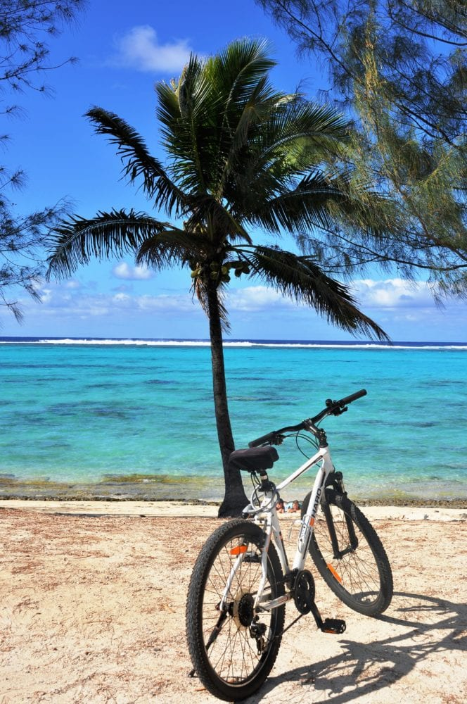 My bike resting against a palm tree b the blue ocean in Rarotonga