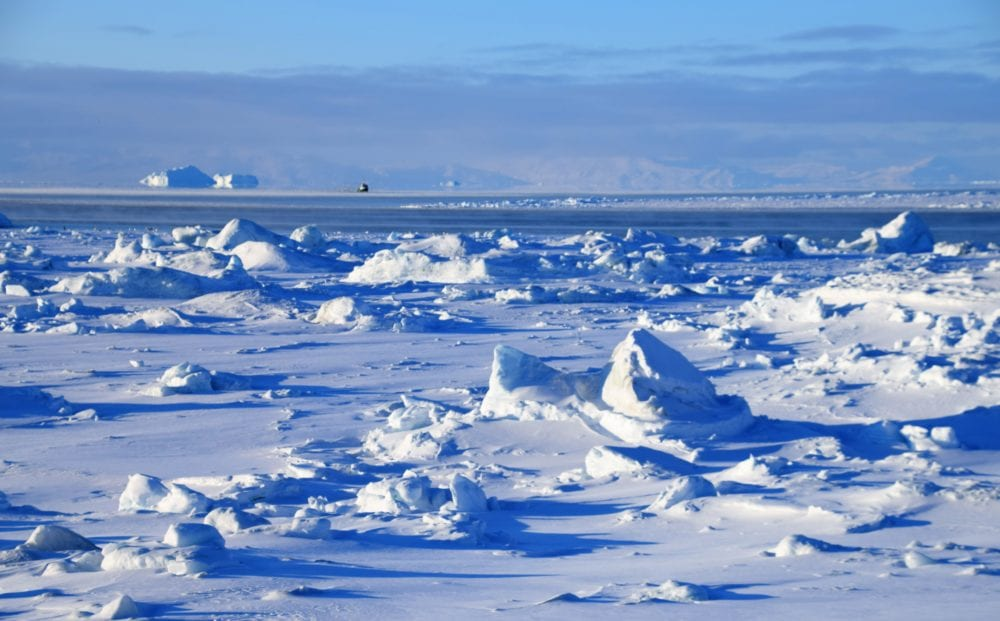 Mini icebergs on the ice field at Icefjord, Greenland