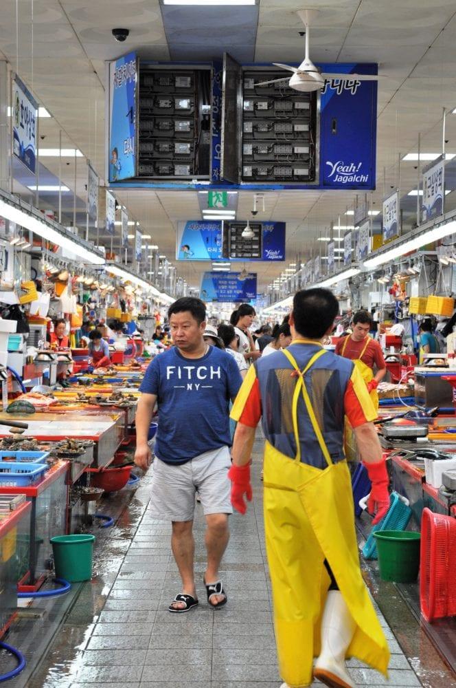 An aisle of the fish market at Busan South Korea
