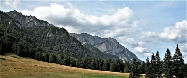 Meadows, forest and mountains, Bucegi, Romania