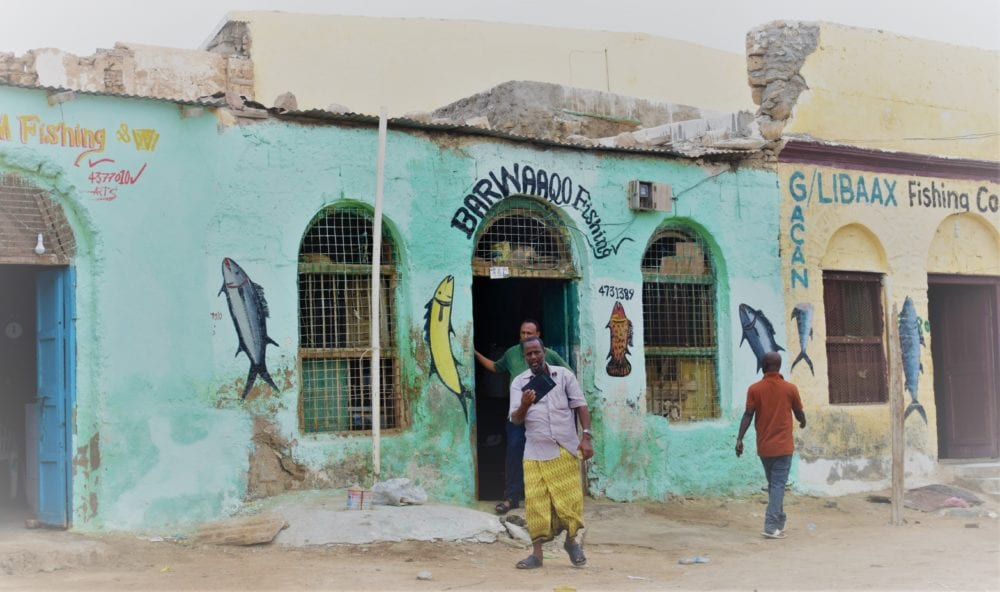 Painted fish shop fronts in Berbera