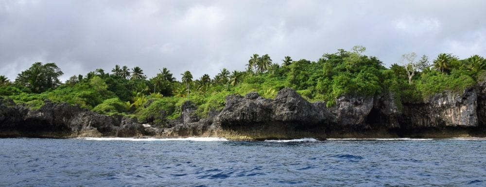 The coral cliffs of Niue from the sea