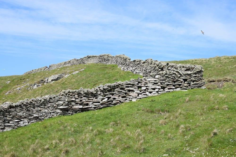 Stone walls on Mousa Island, home of the storm petrels