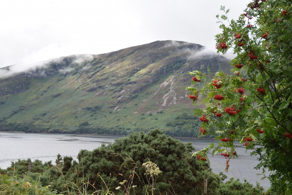 Mountain ash frame cloud topped slopes across Loch Maree