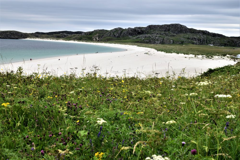 Clachtoll Beach surrounded by machair