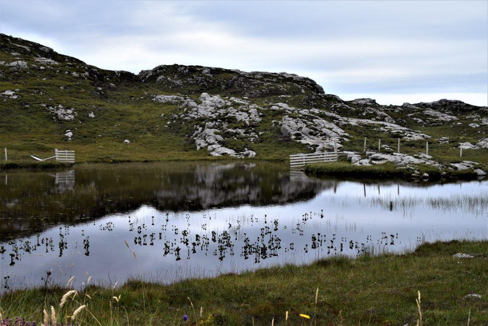 Reflections in a Uig loch